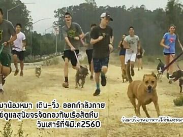 อาสาพาน้องหมาจร เดิน-วิ่ง ออกกำลังกาย
