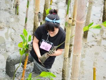 ค่ายอนุรักษ์ป่าชายเลน ตอน ปลูกซ่อมป่าวิถีปลาตีน (ค้างคืน)