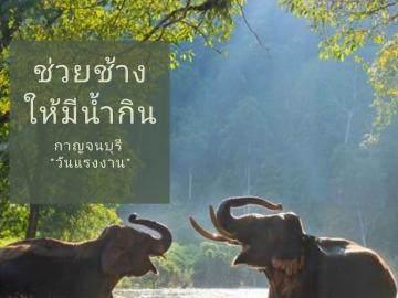 สร้างฝายช่วยช้างให้มีน้ำกิน จ.กาญจนบุรี (วันแรงงาน)