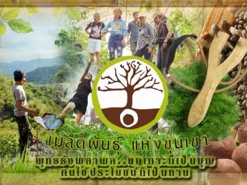ปิดรับ จิตอาสา ยิงเมล็ดพันธุ์พืช เขานางพันธุรัต จ.เพชรบุรี 3 มิถุนายน
