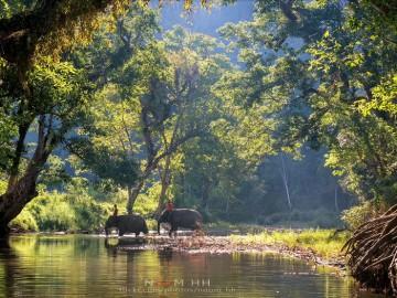 สร้างฝายช่วยช้างให้มีน้ำกิน จ.กาญจนบุรี (30 กันยายน)
