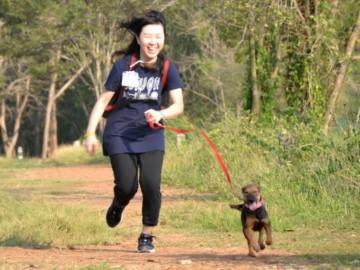 อาสา พาน้องหมาจร เดิน วิ่ง ออกกำลังกาย