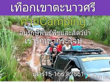 ค่าย Camping อนุรักษ์พันธู์พืชและสัตว์ป่า เรารักเขากระโจม