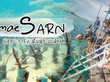 ปลูกประการังฟื้นฟูระบบนิเวศ แสมสาร (เสาร์ 9 มีนาคม)