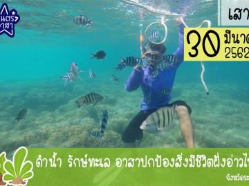 ดำน้ำ รักษ์ทะเล อาสาปกป้องสิ่งมีชีวิตฝั่งอ่าวไทย