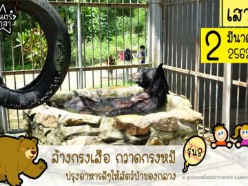 ล้างกรงเสือ กวาดกรงหมี ปรุงอาหารดีๆให้สัตว์ป่าของกลาง รุ่นที่8