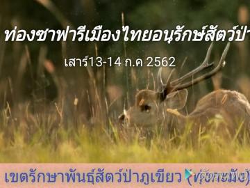 อนุรักษ์เขตรักษาพันธุ์สัตว์ป่าภูเขียว(ทุ่งกะมัง)ชมทุ่งดอกกระเจียว