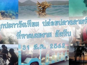 อาสาปลูกปะการังเทียม ปล่อยปลาฉลามหัวทราย รุ่น3