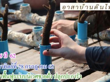รุ่น 6 ปี 62 วันอาทิตย์ที่ 28 กรกฎาคม 62 รับ อาสาฟื้นฟูระบบนิเวศชายฝั่ง (ปลูกปะการังชายฝั่ง) โครงการอาสาฟื้นฟูระบบนิเวศชายฝั่งคืนความอุดมสมบูรณ์ให้ทะเลไทย