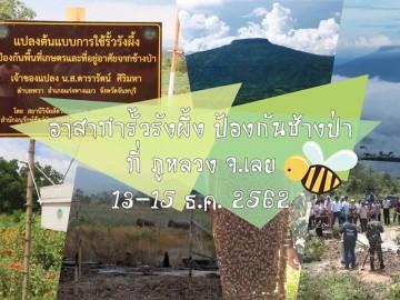 อาสาทำรั้วรังผึ้ง ป้องกันช้างป่า ที่ภูหลวง จ.เลย