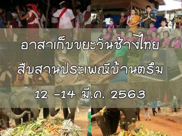 อาสาเก็บขยะวันช้างไทย สืบสานประเพณีบ้านตรึม จ.สุรินทร์