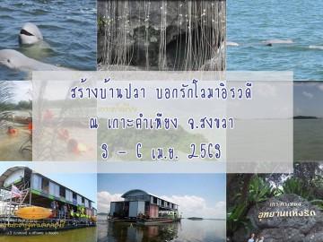 สร้างบ้านปลา บอกรักโลามาอิรวดี ณ เกาะคำเหียง จ.สงขลา