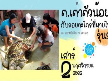 ต.เต่าตัวน้อย กับรอยตะไคร่ที่หายไป รุ่นที่9