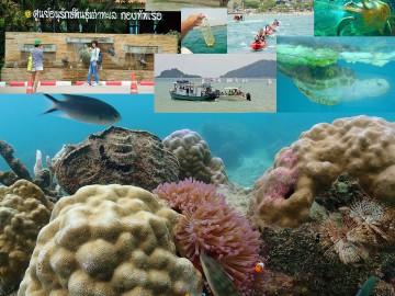 เก็บขยะชายหาด ดำน้ำดูปะการัง 24 พ.ย. 2562